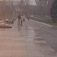Сиреневый туман... :: Nonna
