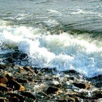 Ах море,море..... :: Александра Мустафина