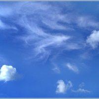 Лето. Голубое небо. Белые облака :: Людмила Якимова