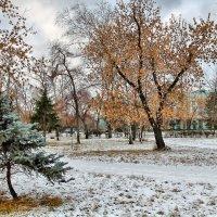 Завершая осень 2. :: Дмитрий Климов