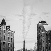 дым! :: Николай Леммер