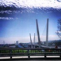 Мост :: Человек Аркадий
