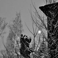 Ночной стражник :: Сергей Банков