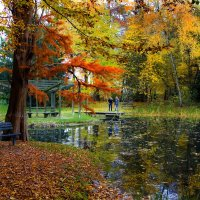 У лесного пруда... :: АндрЭо ПапандрЭо
