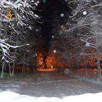 Зима. Утро. :: Светлана Франчук