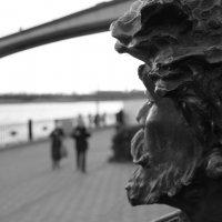 Холодный взгляд .... :: Allekos Rostov-on-Don