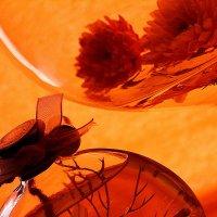 Оранжевое настроение. :: Лазарева Оксана