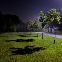 Ночью в парке :: Игорь Герман
