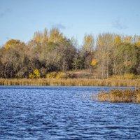 У озера :: Александр Рябков