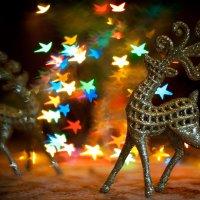 Новогоднее настроение :: Yana Popova