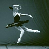 танец черного лебедя :: Сергей Черных