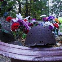 на братском кладбище :: Сергей Кочнев