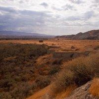 В долине Иордана :: Юрий Вайсенблюм