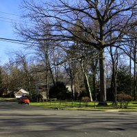 Neighborhood :: Яков Геллер