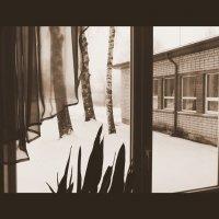 Зимнее окно 1 :: Юрий Бондер