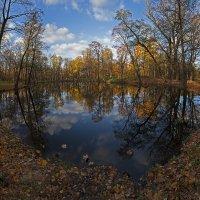 Осенний прудик. :: Юрий