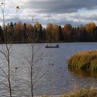На озере :: Александр Викторенков