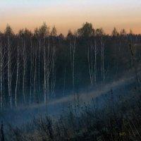 Раннее утро в ноябре. :: Тамара Бучарская