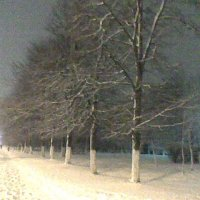 Зимушка-зима :: Людмила Тюрина