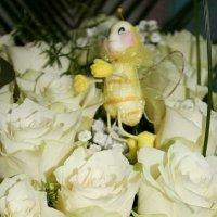 Поселилась пчелка))) :: Яна Гоголь