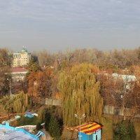 Все еще осень ...здорово :: Татьяна Гулевич-Хациева