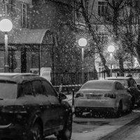 Снегопад :: Сергей Басов