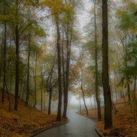 Путь в туман :: Виктор Позняков