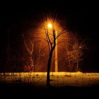 ночь, улица, фонарь... :: Павел Мамаев