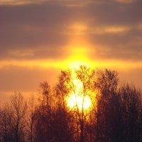 Восход солнца :: Olga Merlinge
