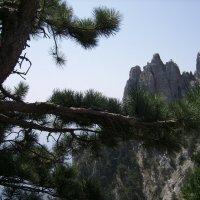 вид с плато на корону Ай-Петри :: Svetlana Makarenko