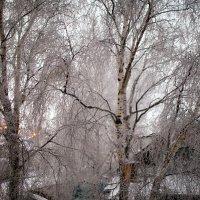 вид из окна... :: Олег Петрушов