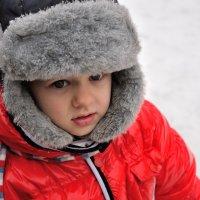 Славный мальчуган. :: Андрей В.
