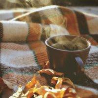 Холодным осенним утром :: Маргарита Васильева