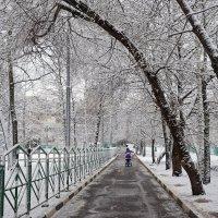 Первый снег в Москве. :: Юрий Шувалов