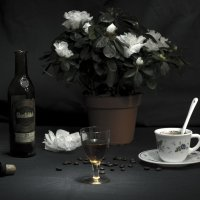 Одиночество :: Роман Тищенко