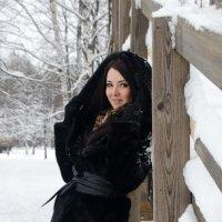 зима :: Владимир Юминов