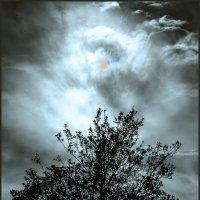 чёрно белый Апокалипсис :: Shmual Hava Retro