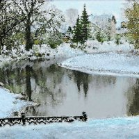 Первые снеги :: Юрий