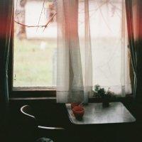 Home sweet home :: Мария Бруцкая