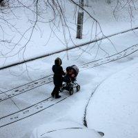 Первый снег :: Игорь Герман