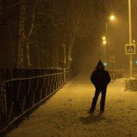 Зимняя прогулка :: Ирина Богатырёва