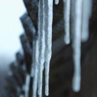 Зима :: Христя Стефанишина