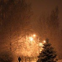 Зима :: Диана Матисоне