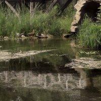 Руина моста :: sv.kaschuk