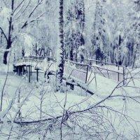 Зима... :: Мария Макарова