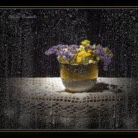 Вечерний дождь. :: Лилия *
