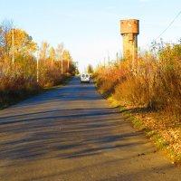 Полосатая дорога :: Леонид Мельник