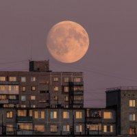 Луна в закате :: Dmitriy Abrosimov
