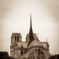 собор Божьей матери в Париже :: Александр Беляков