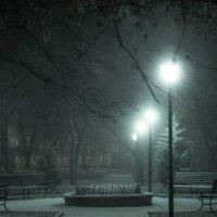 Ночная тишина :: Igor Topchiev